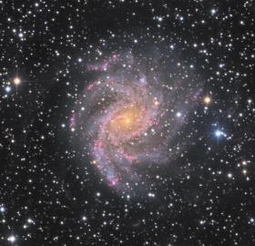 NGC 6946 (Cepheus)