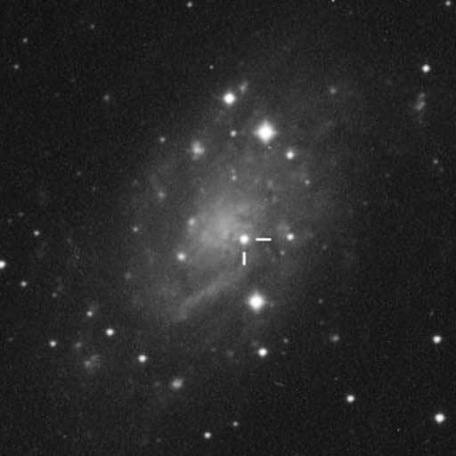SN2004dj in NGC 2403